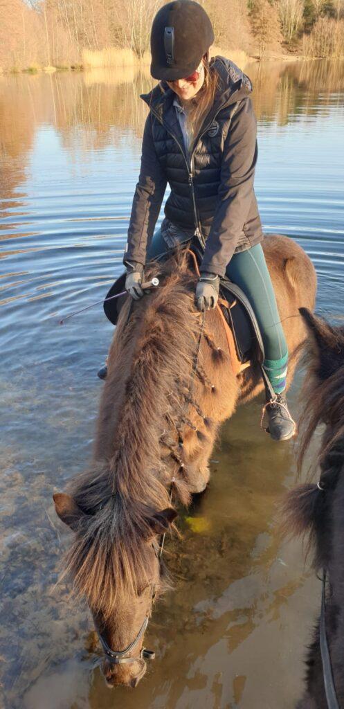 Kerstin Baden Verkaufspferd